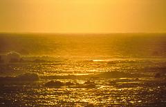 Last minute alle Canarie, dal 17 giugno soggiorno a Fuerteventura -