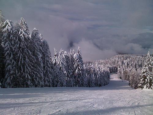 Sciare in Trentino Alto Adige