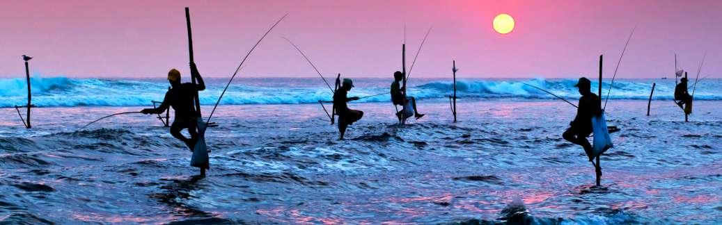 TOUR SRI LANKA CLASSICO E YALA PARK | Tour Sri Lanka