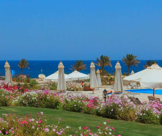 ROYAL BRAYKA BEACH RESORT | Marsa Alam