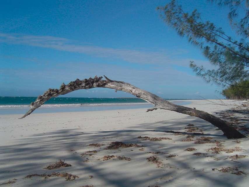 GRAN TOUR DEL NORD   Madagascar