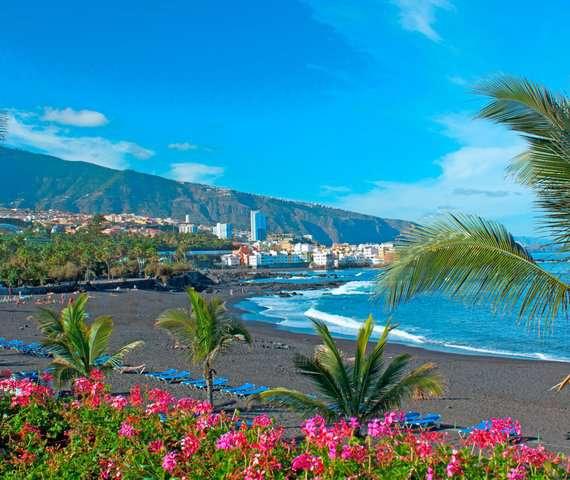 APPARTAMENTI LOS DRAGOS DEL NORTE | Tenerife