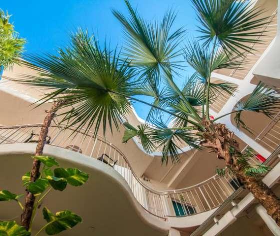 HOTEL COCORIO   Playa del Carmen
