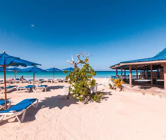 NEGRIL TREE HOUSE BEACH RESORT | Negril