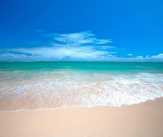 WHALA!BAVARO BEACH RESORT | Punta Cana