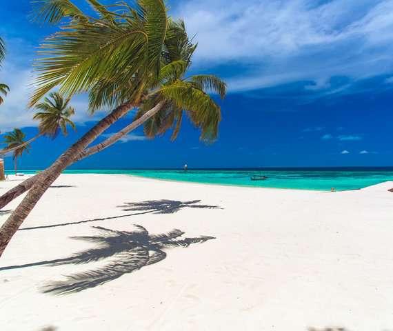 AAAVEEE NATURE'S PARADISE ISLAND RESORT | Atollo di Dhaalu